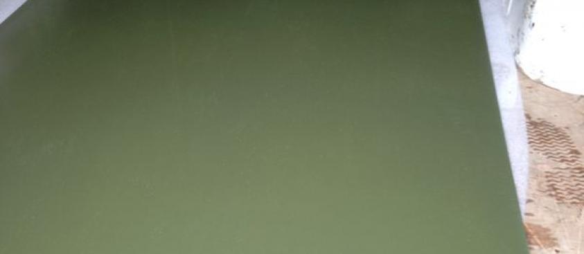 Wimbledon green 4m x 1m sheets